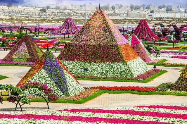 Dubai-Miracle-Garden-08