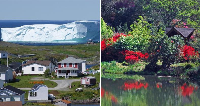 Newfoundland+Iceberg