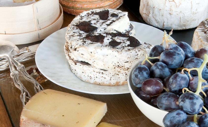 !cheese