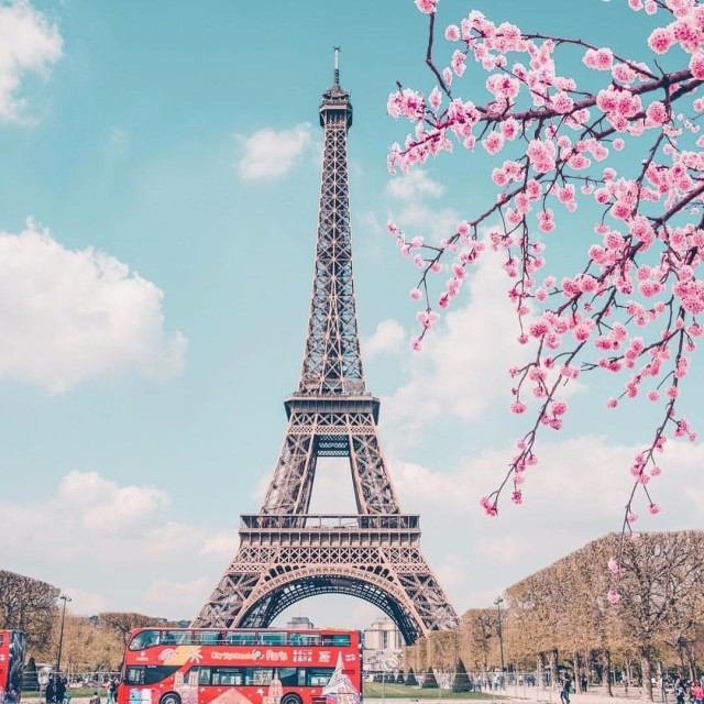 Paris during the spring  TLPicks courtesy of iamtravelr