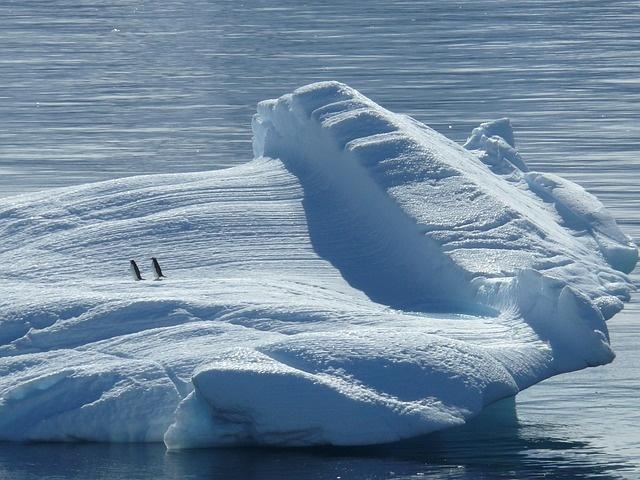 iceberg-329852_640_01