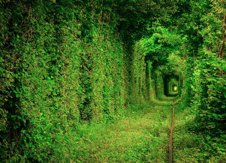 Тоннель Любви, Клевань, Украина