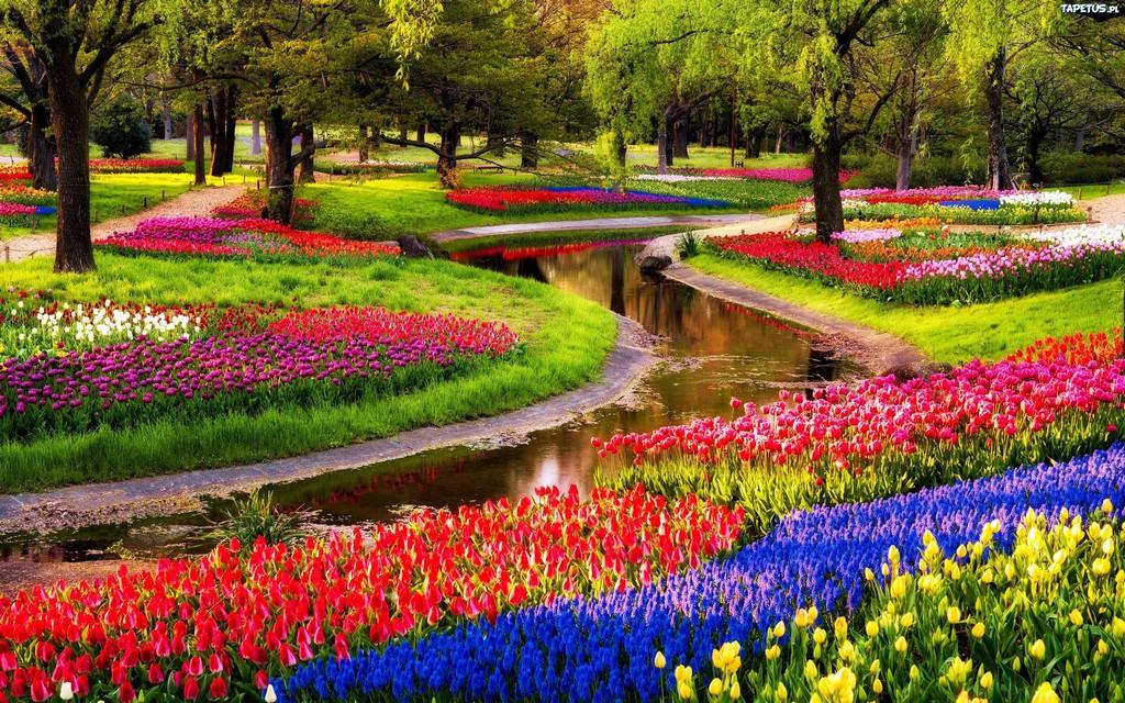Весна сад цветы