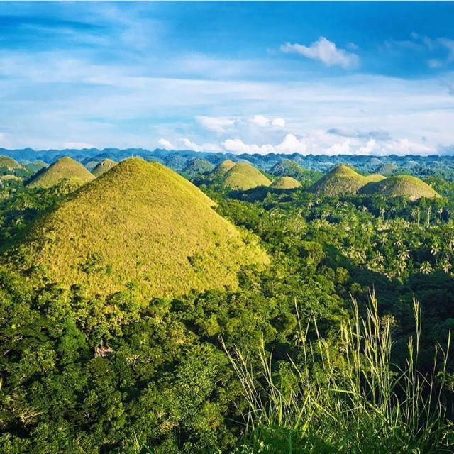 Views for days at the Chocolate Hills tlpicks courtesy ofhellip