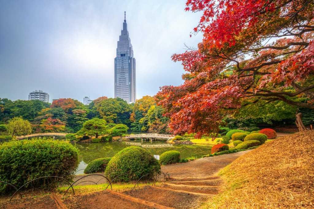 Парк, Токио