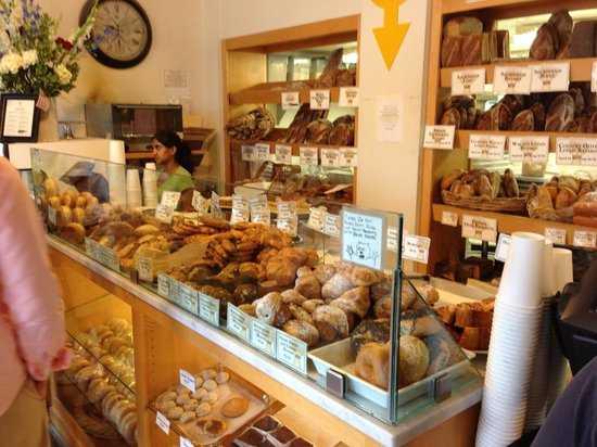 the-model-bakery