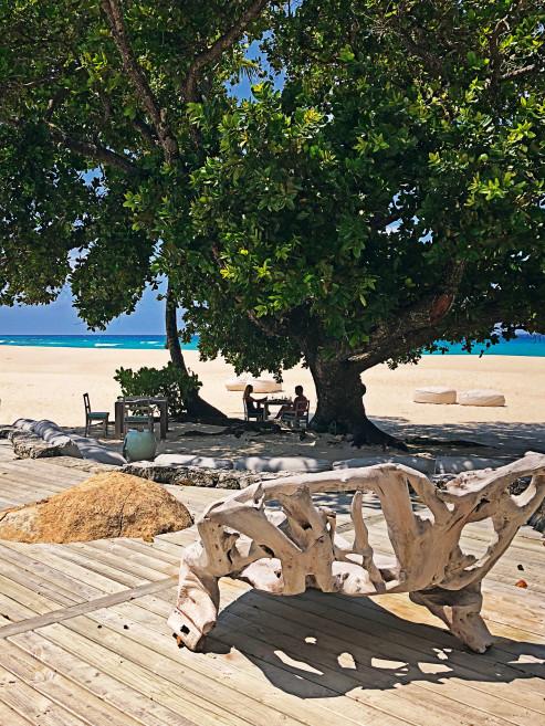 Обед в тени дерева на самой «оживленной» части острова Piazza