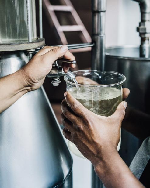 Дистилляция семян кардамона с использованием пара превращает их в чистейшее эфирное масло