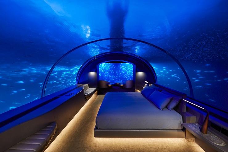 Говорят, на рыбок полезно смотреть перед сном. Фото: marusyacup.com