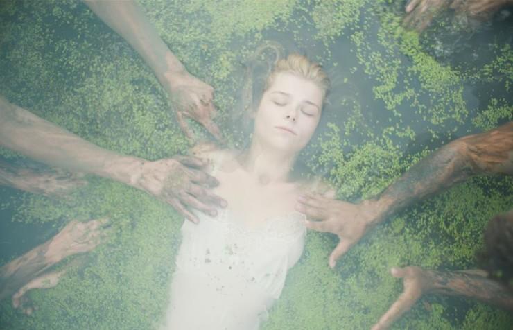 """Дни украинского кино в Брюсселе, """"Коли падають дерева"""""""