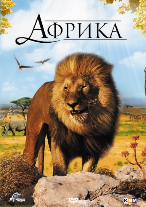 """Африка"". Фото: HDrezka.me"