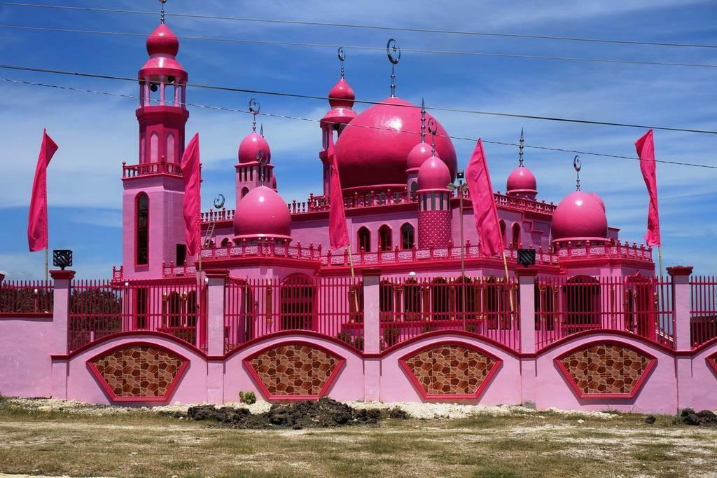 Розовая мечеть Фото: http://newpix.ru