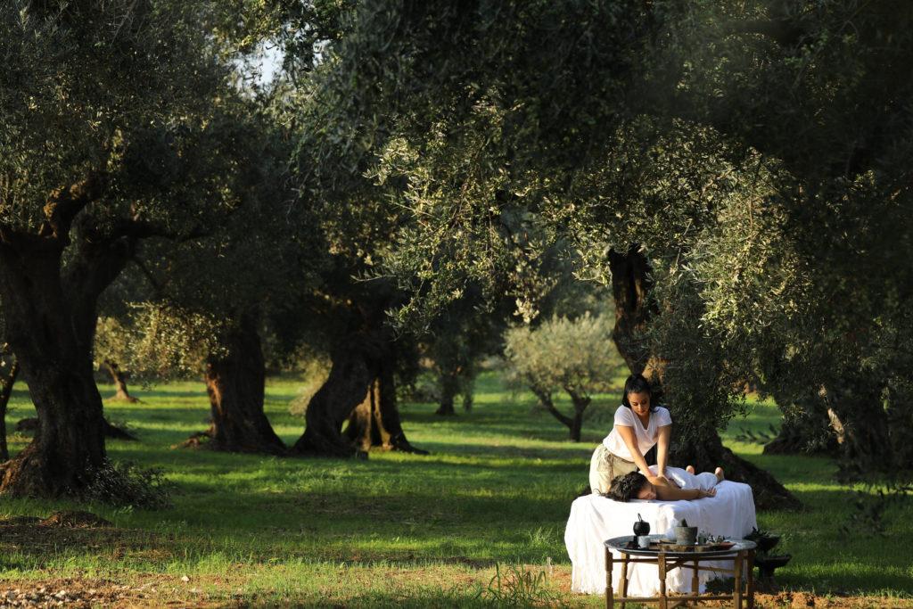 Спа-процедуры в оливковой роще
