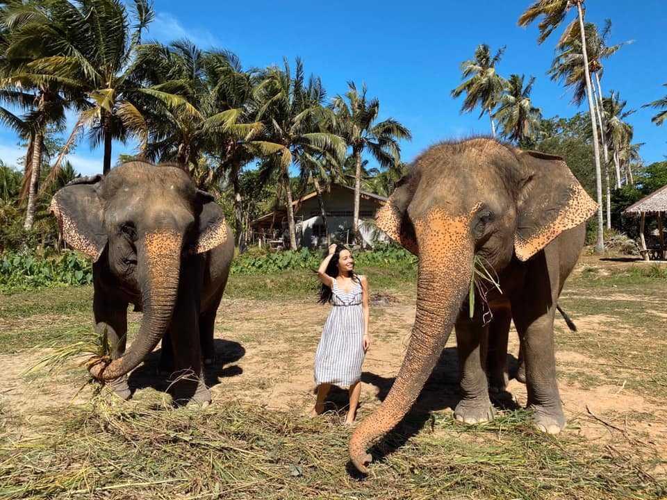 За каждым слоном закрепляется только один человек, который о нем заботится