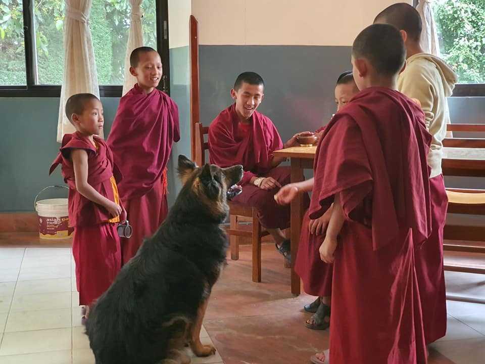 Монастырь в Катманду, Непал - карантин в Непале