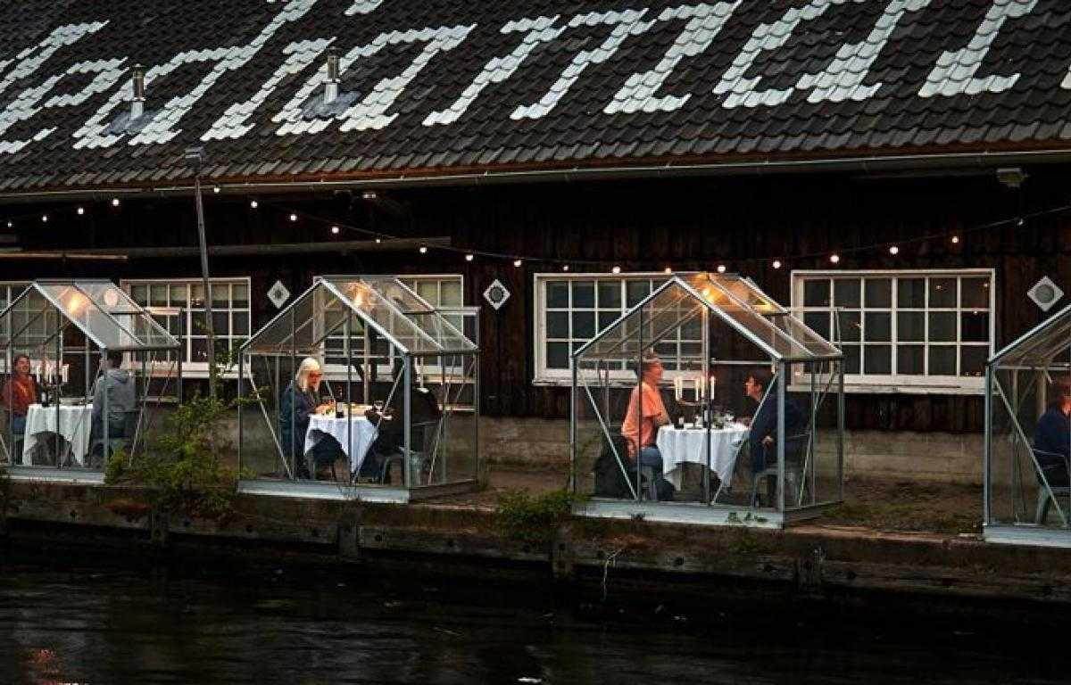 «Карантинные теплицы» в Амстердаме