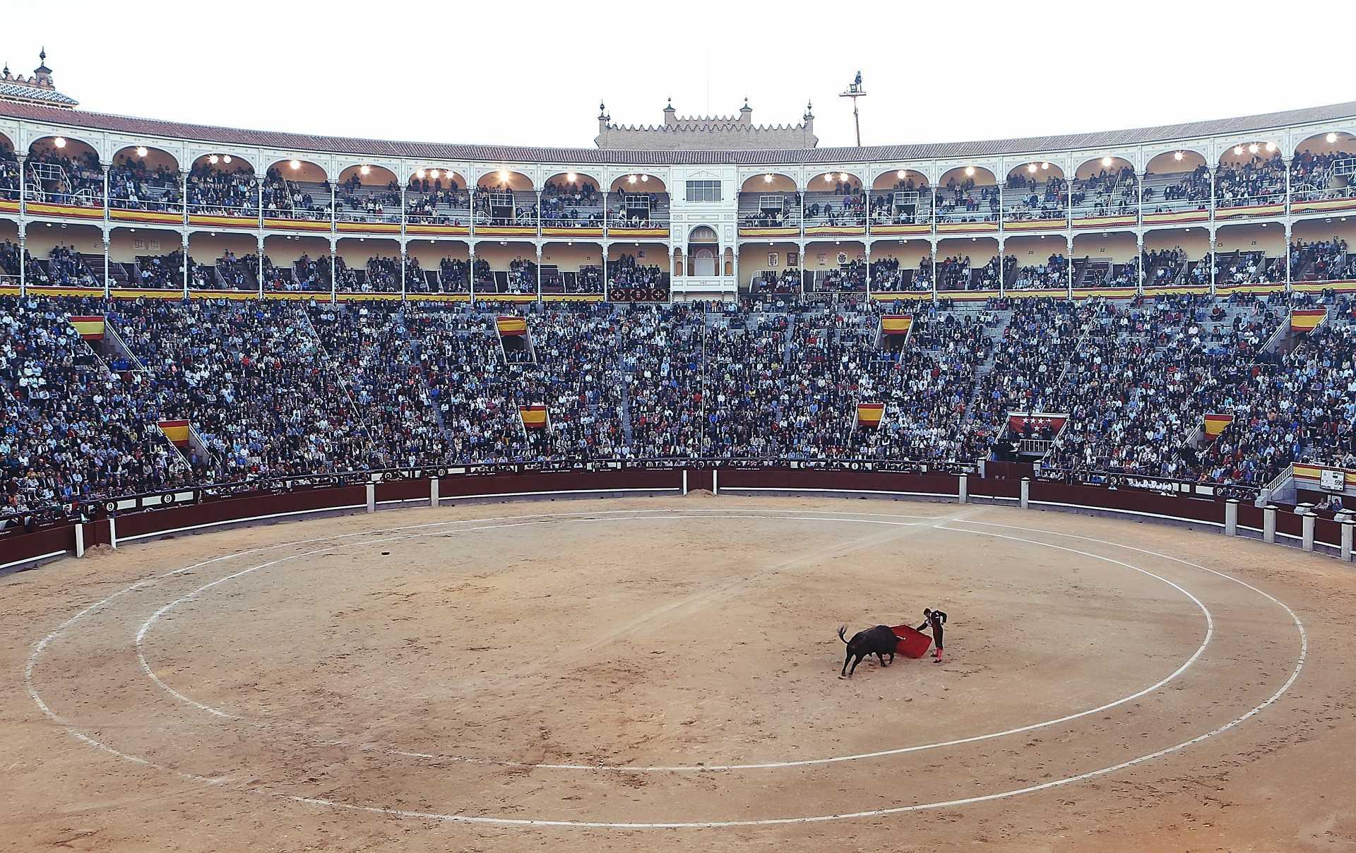 Главное отличие от испанской корриды - быка не убивают в конце действия