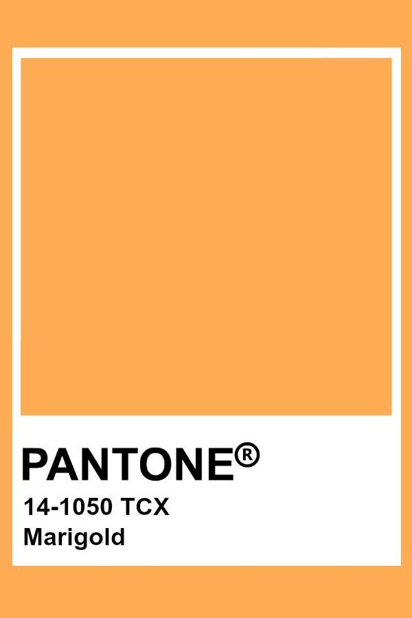 Золотисто-оранжевый (Marigold)