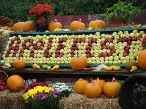 Яблочный фестиваль Applefest