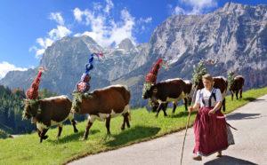 Праздник возвращения с горных пастбищ Альматриб