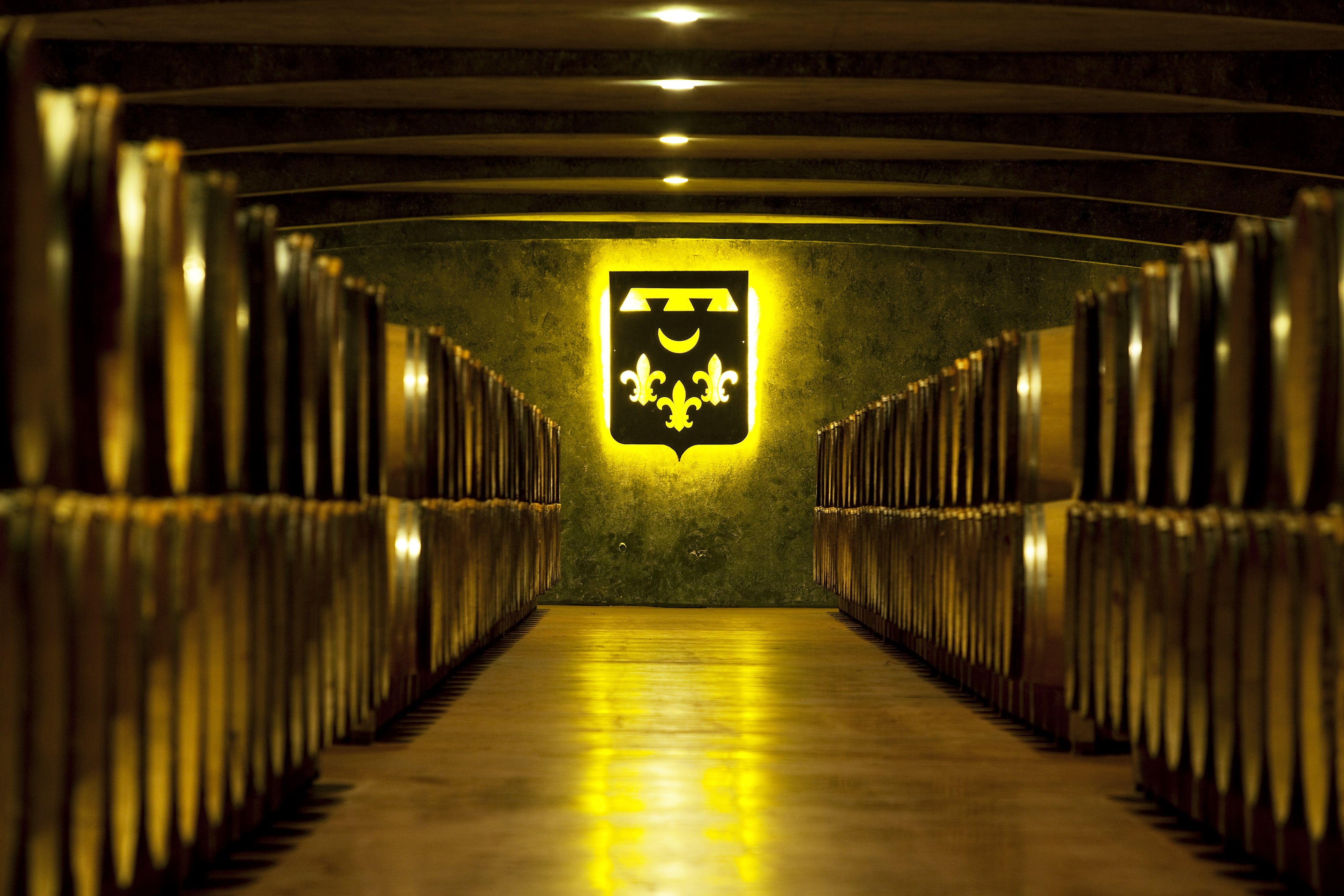 Виноделие Бордо
