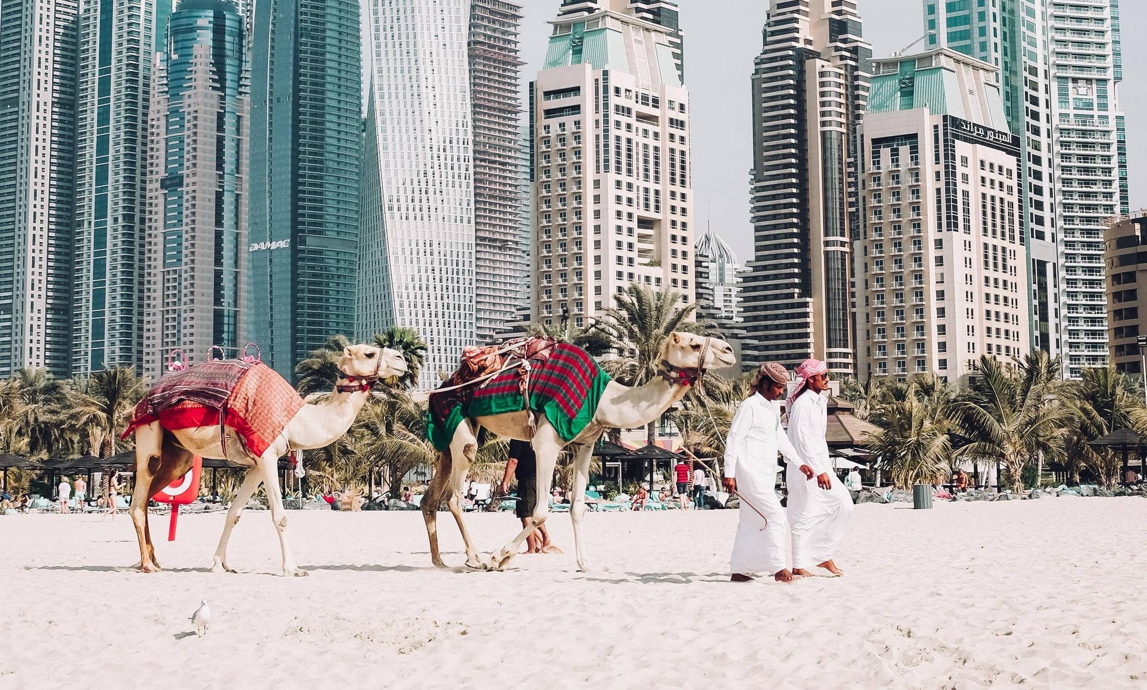 Дубай что посмотреть в Дубае